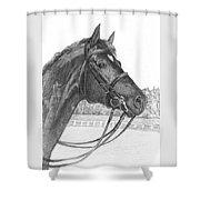 Oracul Shower Curtain