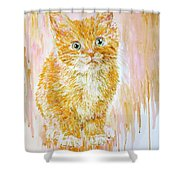 Orange .  Shower Curtain