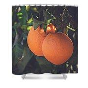 Orange #1 Shower Curtain