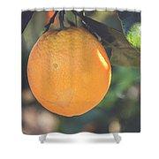 Orange #2 Shower Curtain