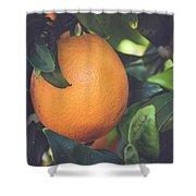 Orange #3 Shower Curtain