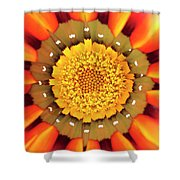 Orange African Daisy Shower Curtain