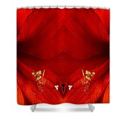 Orange Amaryllis Hippeastrum Close-up Double Shower Curtain