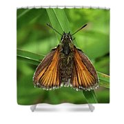 Orange And Brown Moth Shower Curtain