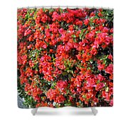 Orange And Colral-pink Flowers 2 Shower Curtain