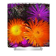 Orange And Fuchsia Color Flowers Shower Curtain