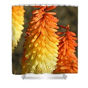 Orange And Gold Flower  Shower Curtain