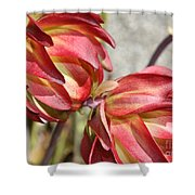 Orange And Light Green Flowers Shower Curtain