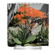 Orange And Pink Exotic Bell Flowers Shower Curtain