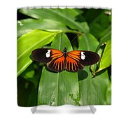 Orange And The Black Shower Curtain