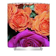 Orange And White With Pink Tip Roses Shower Curtain