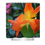 Orange And Yellow Canna Lily 2  Shower Curtain
