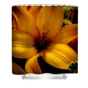 Orange And Yellow Lily Shower Curtain