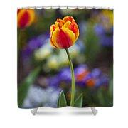 Orange And Yellow Tulip Shower Curtain