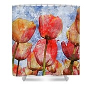 Orange And Yellow Tullips With Blue Sky Shower Curtain