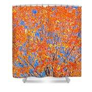 Orange Autumn Impression Shower Curtain