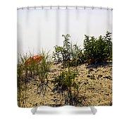 Orange Beach Umbrella  Shower Curtain