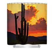 Orange Beautiful Sunset  Shower Curtain