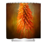 Orange Blast In The Garden Shower Curtain