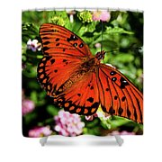 Orange Butterfly Shower Curtain by Valeria Donaldson