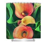 Orange Calla Lily Shower Curtain