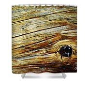 Orange Colored Old Wooden Board Shower Curtain
