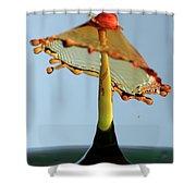 Orange Crown 3 Shower Curtain