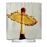 Orange Crown 9 Shower Curtain
