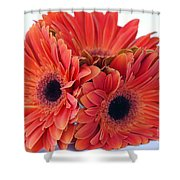 Orange Crush Shower Curtain