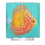 Orange Discus Fish With Purple Spots Shower Curtain