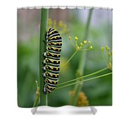 Orange Dot Caterpillar Shower Curtain
