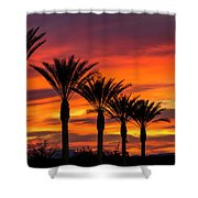Orange Dream Palm Sunset  Shower Curtain