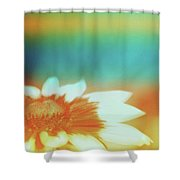 Orange Dreams Shower Curtain