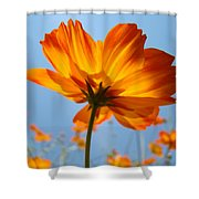 Orange Floral Summer Flower Art Print Daisy Type Blue Sky Baslee Troutman Shower Curtain