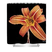 Orange,  Flower Shower Curtain