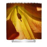 Orange Flower Stamen Shower Curtain