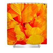 Orange Frills Shower Curtain