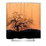 Orange Glow Sunset In The Desert Shower Curtain