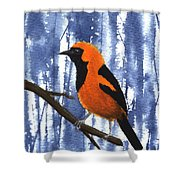 Orange-headed Oriole Shower Curtain