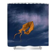 Orange Kite Shower Curtain