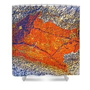 Orange Lichen Shower Curtain