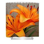 Orange Lilies 2 Shower Curtain