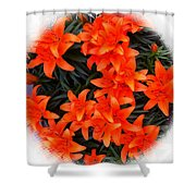 Orange Lilies Vignette Shower Curtain