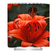 Orange Lily Digital Painting Shower Curtain