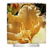 Orange Lily Flower Floral Art Prints Baslee Troutman Shower Curtain