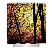 Orange Moon Shower Curtain by Valeria Donaldson