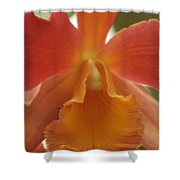 Orange Orchid 2 Shower Curtain