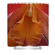 Orange Orchid 3 Shower Curtain
