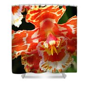 Orange Orchid Shower Curtain