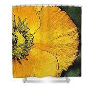 Orange Oriental Poppy Shower Curtain